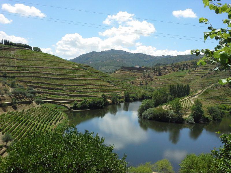 Douro, Douro Valley, Landscape, Paisagem, River, Rio, Cruise, Cruzeiro, Wine, Vinho, Rabelo, Enoturismo, Enotourism, Tourism, Turismo,